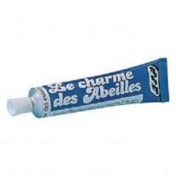 Charme Abeilles 30Gr