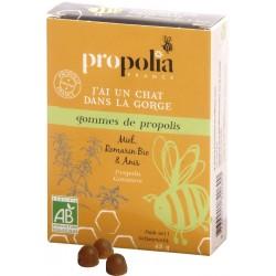 Gommes Propolis Miel Romarin Bio